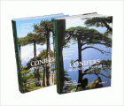 Conifers around the world book cover